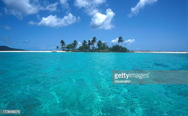 A Caribbean beach island and tropical clear waters