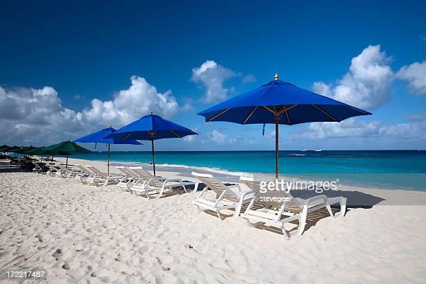 Caribbean Beach Loungers