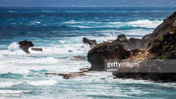 """caribbean coast - cove bay, barbados - """"peeter viisimaa"""" or peeterv stock pictures, royalty-free photos & images"""
