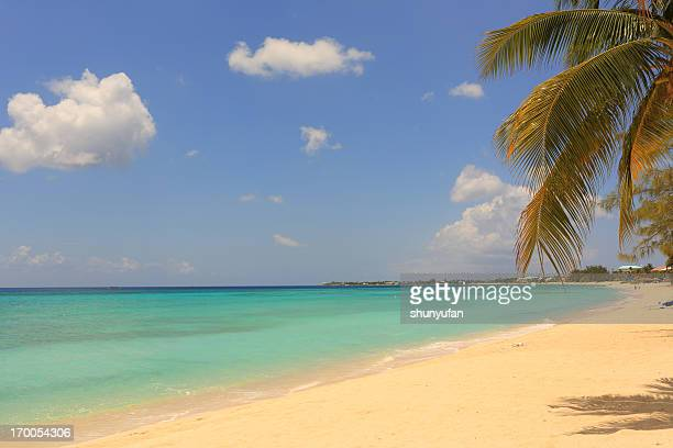 Caribbean: Dream Beach