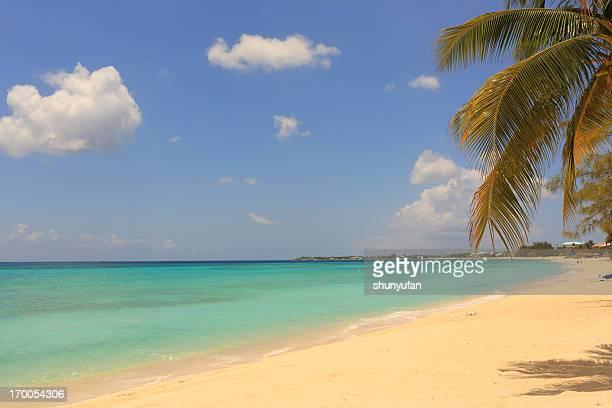 Caribe: Playa de ensueño