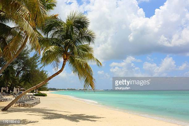 caribbean: dream beach - jamaica stock pictures, royalty-free photos & images