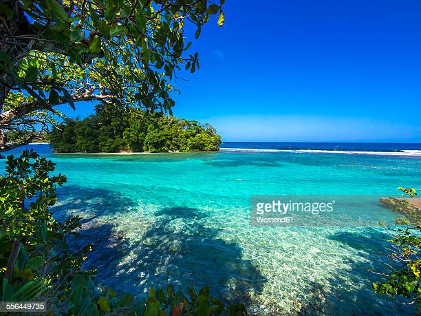 caribbean, greater antilles, jamaica, portland parish, port antonio, view to pellew island - jamaica stock pictures, royalty-free photos & images