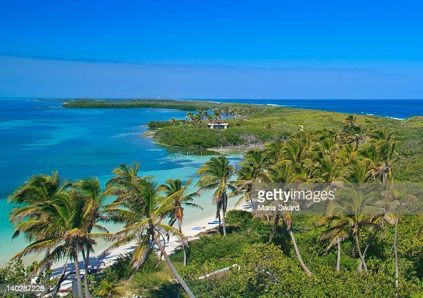 caribbean (mexican) island paradise isla contoy - quintana roo stock pictures, royalty-free photos & images