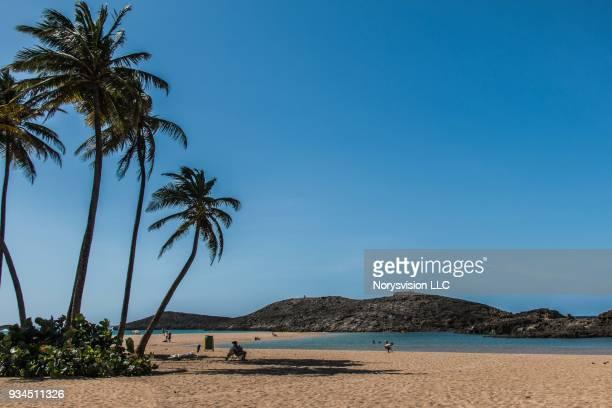 caribbean life in puerto rico - puerto rico fotografías e imágenes de stock