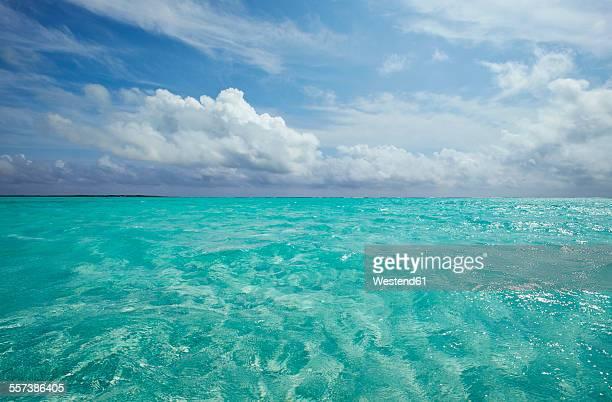 Caribbean, Netherlands Antilles, Bonaire, seascape at Lac Bay