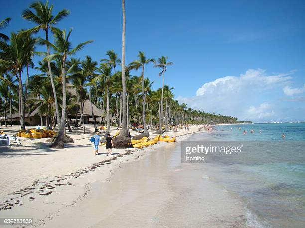 caribbean - samoa stock pictures, royalty-free photos & images