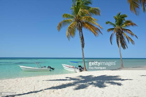 Caribbean Scenes 76