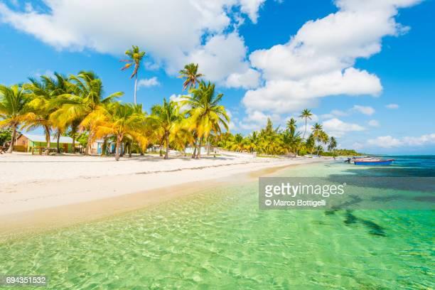 Caribbean Sea and tropical beach.