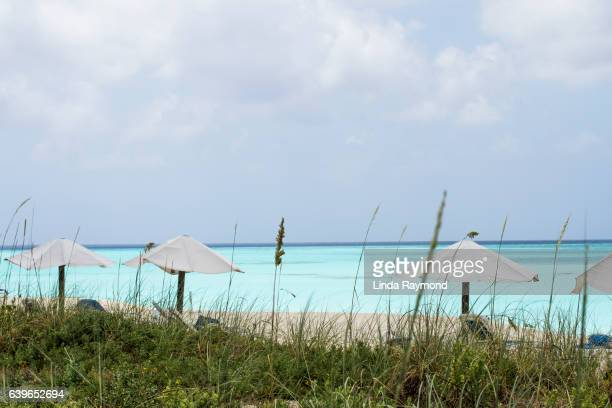 Caribbean sea, beach and sunshade