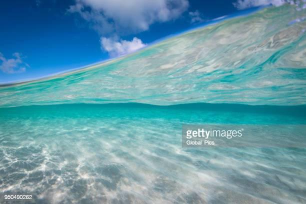 カリブ海 - 浅い ストックフォトと画像