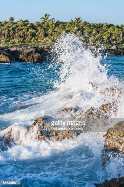 caribbean sea waves crashing onto the iron shore of tropical coastline in mexico. - istock stock-fotos und bilder