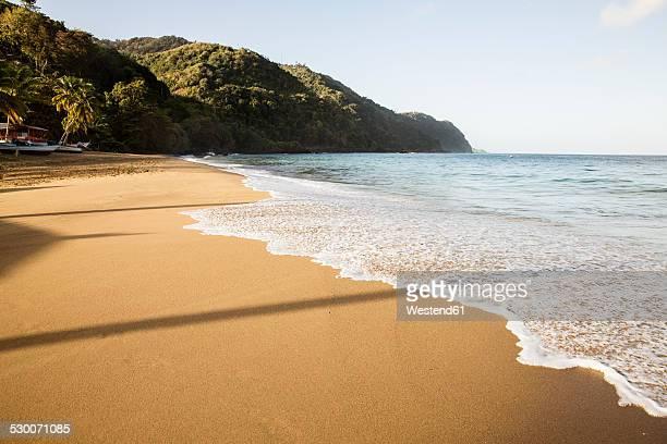caribbean, trinidad and tobago, tobago, castara beach - paisajes de trinidad tobago fotografías e imágenes de stock