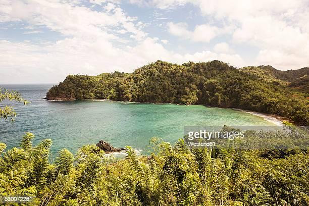caribbean, trinidad and tobago, tobago, englishman's bay beach - paisajes de trinidad tobago fotografías e imágenes de stock