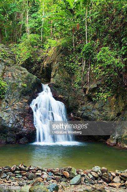 caribbean waterfall - tobago stock pictures, royalty-free photos & images