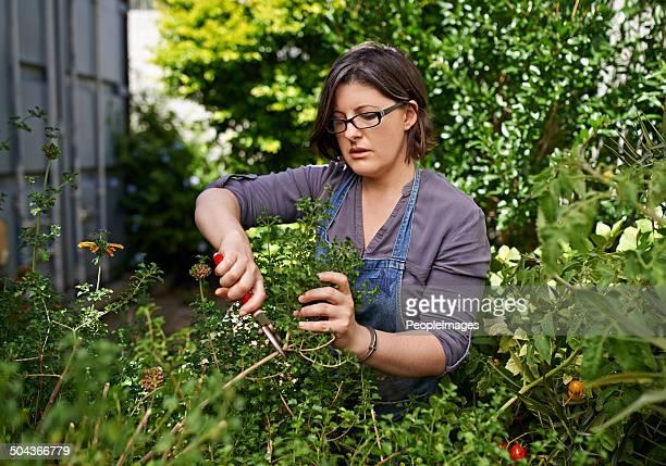 Caring for her garden