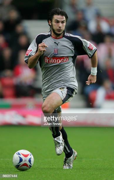 Carl Hoefkens of Stoke City in action during the CocaCola Championship match between Southampton and Stoke City at St Mary's Stadium on October 29...