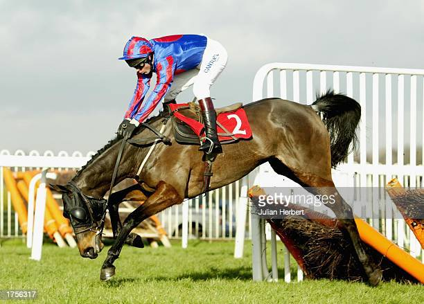 Carl Llewellyn and Mistanoora survive a blunder at the last flight before going onto land The Ripley Juvenile Novices Hurdle Race run at Sandown...