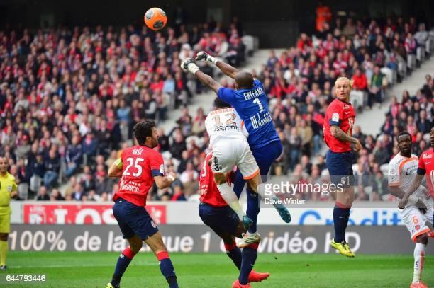Carl MEDJANI / Vincent ENYEAMA - - Lille / Valenciennes - 33eme journee de Ligue 1, Photo : Dave Winter / Icon Sport