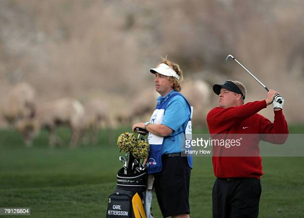 Carl Pettersson watches his second shot in front of a herd of grazing mountain goats during the fourth round of the 49th Bob Hope Chrysler Classic at...