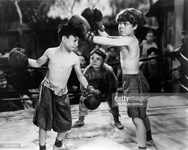 Carl Switzer as Alfalfa George McFarland as Spanky and Tommy Bond as Butch in 'Glove Taps' an Our Gang comedy later known as The Little Rascals...