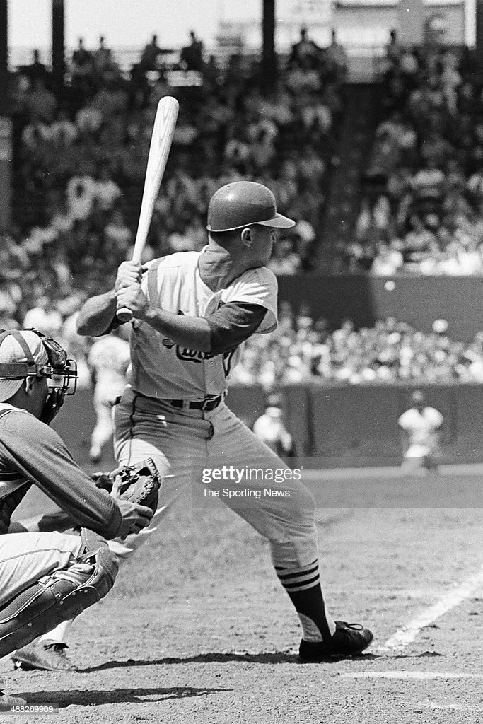Image result for carl warwick 1964 cardinals