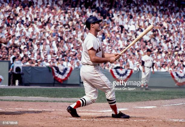 Carl Yastrzemski of the Boston Red Sox at bat during the World Series against the St Louis Cardinals at Fenway Park on October 1967 in Boston...