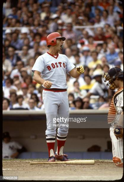 Carl Yastrzemski of the Boston Red Sox at Yankee Stadium in Bronx New York in 1978 Yaz played for the Red Sox from 19611983