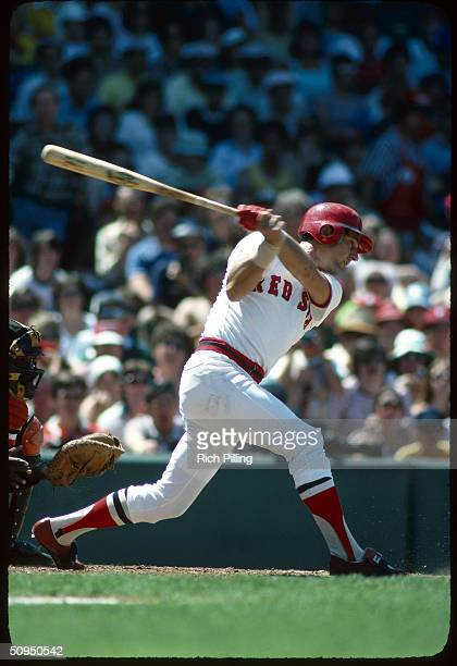 Carl Yastrzemski of the Boston Red Sox batting at Fenway Park in Boston Massachusetts in 1978 Yaz played for the Red Sox from 19611983