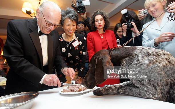 Carlee a German shorthaired pointer gets ready to eat her steak lunch at Sardi's during a whirlwind trip around Manhattan after she won the top prize...