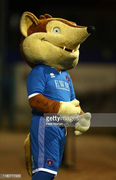 Carlisle United mascot Olga the Fox looks on prior to the Sky Bet League Two match between Carlisle United and Northampton Town at Brunton Park on...