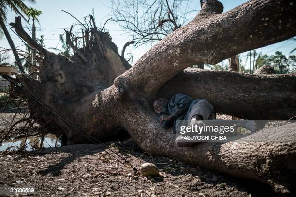 Carlo Antonio sleeps on a tree damaged by the cyclone Idai at an evacuation site in Tica Mozambique on March 24 2019 Cyclone Idai smashed into...