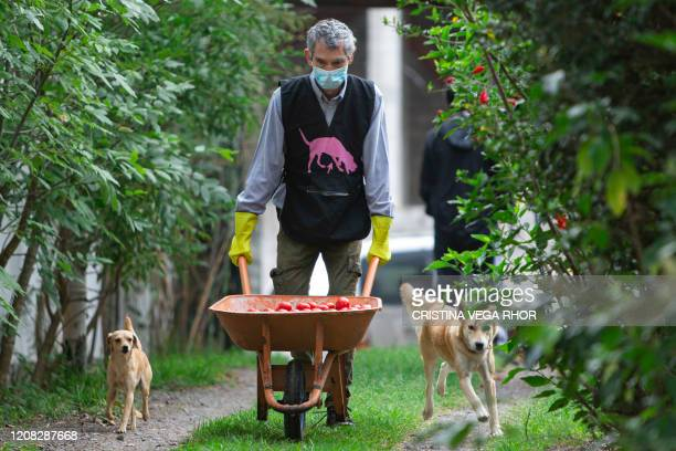 Carlos Andrade, one of the owners of Mamey, a micro-enterprise which produces organic fruits, vegetables and food and makes home deliveries, pushes a...