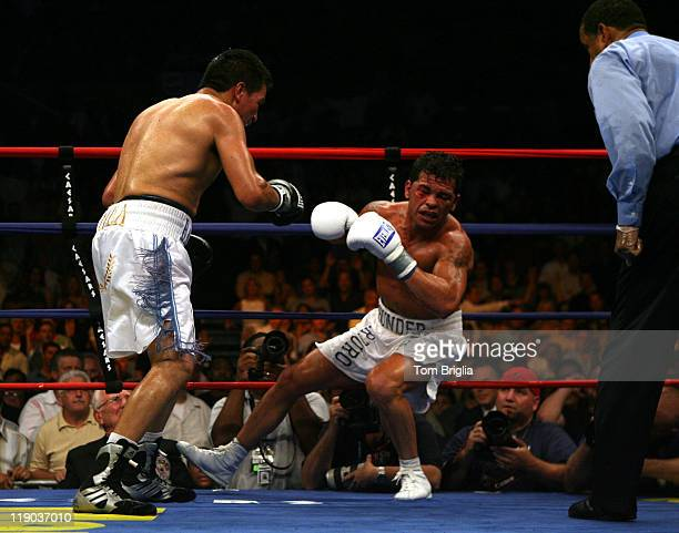 Carlos Baldomir knocks out Arturo Gatti at Boardwalk Hall in Atlantic City NJ on July 22 2006