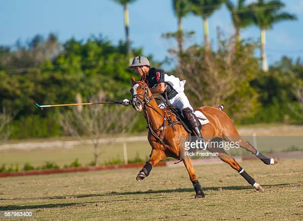 Carlos Gracida of Audi during The 20 Goal NorthAmerican Polo Finals at the Grand Champions Polo Club in Wellington FL on November 11 2012 The Audi...