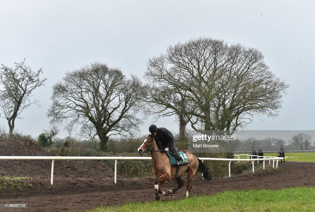 IRL: Willie Mullins Yard Visit