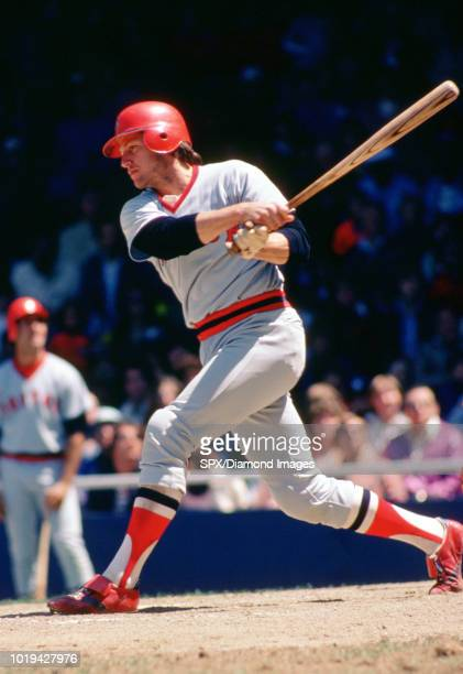 Carlton Fisk of the Boston Red Sox at bat during a game from his 1978 season Carlton Fisk played for 24 years with 2 different teams was a 11time...