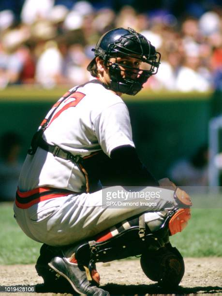 Carlton Fisk of the Boston Red Sox catching during a game from his 1973 season Carlton Fisk played for 24 years with 2 different teams was a 11time...