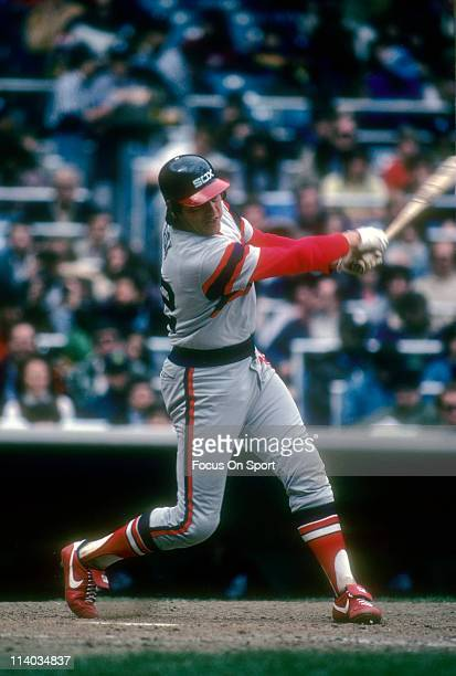 Carlton Fisk of the Chicago White Sox bats against the New York Yankees during a Major League Baseball game circa 1983 at Yankee Stadium in the Bronx...