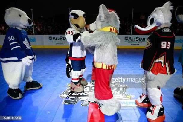Carlton the Bear of the Toronton Maple Leafs Slapshot of the Washington Capitals Harvey the Hound of the Calgary Flames and Wild Wing of the Anaheim...