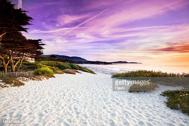 carmel beach in carmel-by-the-sea - monterrey stock pictures, royalty-free photos & images