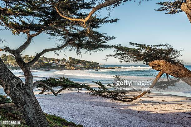 carmel: the beach at sunrise - phil haber stock pictures, royalty-free photos & images