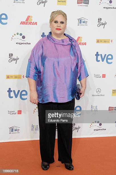 Carmina Barrios attends Jose Maria Forque awards photocall at Canal theatre on January 22 2013 in Madrid Spain
