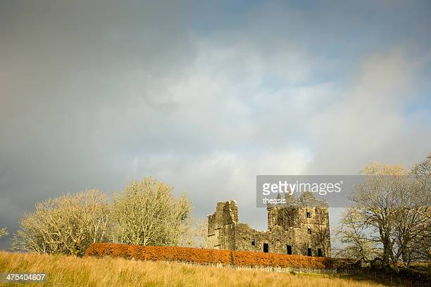 carnassarie castle - theasis stock pictures, royalty-free photos & images