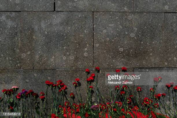 carnation flowers on a granite memorial plaque at the bratsk cemetery in memory of the fallen soviet soldiers of the 2nd world war. the concept of victory day (may 9), the memory of the ancestors, the laying of flowers at the tombstone. - ceremony stock pictures, royalty-free photos & images