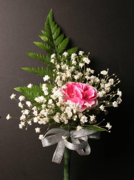 Carnation, Object