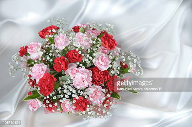 Carnations and gypsophila