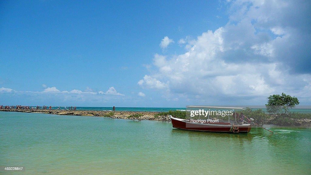 Carneiros beach : Foto de stock
