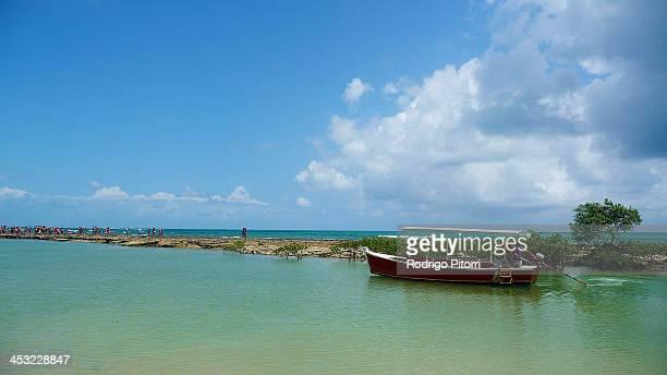 carneiros beach - rodrigo pitorri stockfoto's en -beelden