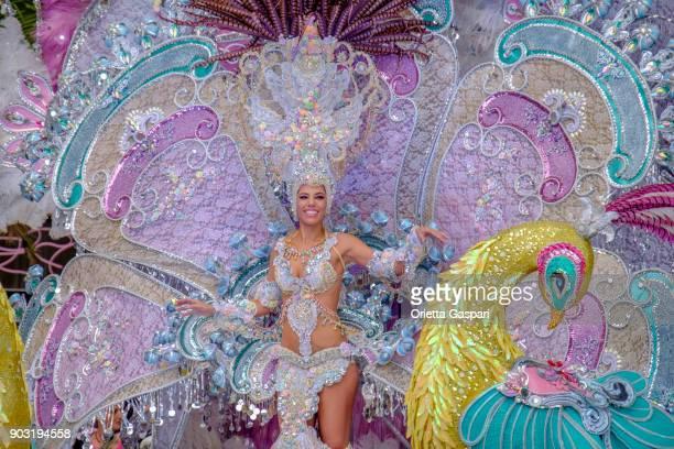 carnaval in santa cruz de tenerife, canarische eilanden - spanje - tenerife stockfoto's en -beelden